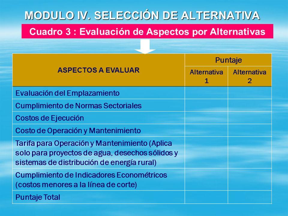 MODULO IV. SELECCIÓN DE ALTERNATIVA Cuadro 2 : Verificación de Requisitos por Alternativas REQUISITOS Puntaje Alternativa 1 Alternativa 2 Evaluación d