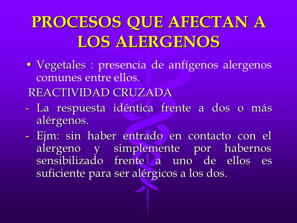 PROCESOS QUE AFECTAN A LOS ALERGENOS Vegetales :Vegetales : presencia de anfígenos alergenos comunes entre ellos. REACTIVIDAD CRUZADA REACTIVIDAD CRUZ