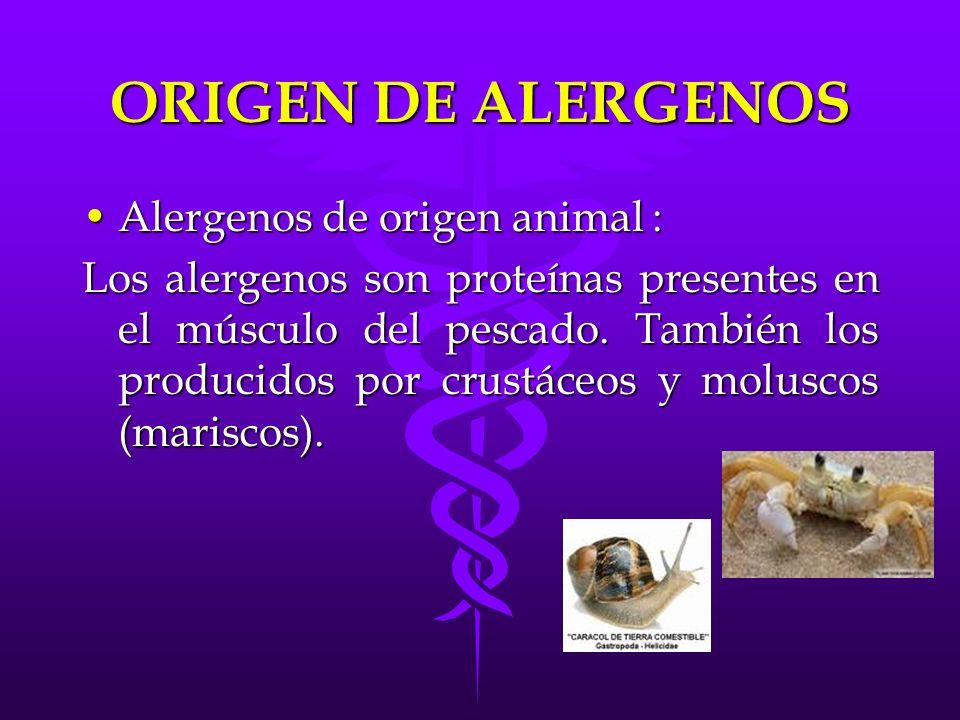 ORIGEN DE ALERGENOS Alergenos de origen animal :Alergenos de origen animal : Pescado: Pescado: -El bacalao, la merluza, el lenguado, el gallo (pescados blancos), la sardina, el boquerón y el atún (pescados azules).
