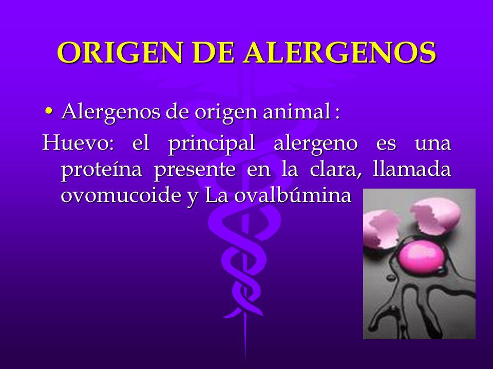 ORIGEN DE ALERGENOS Alergenos de origen animal :Alergenos de origen animal : Huevo: el principal alergeno es una proteína presente en la clara, llamad