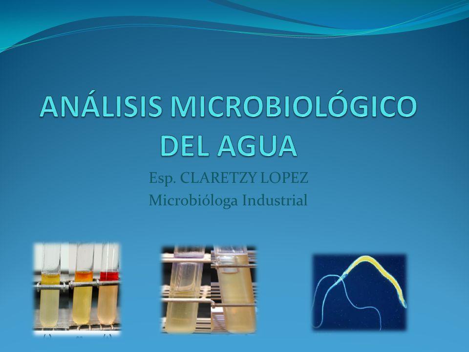 ANÁLISIS MICROBIOLÓGICO DEL AGUA Se puede definir el análisis microbiológico como el conjunto de operaciones encaminadas a determinar los microorganismos presentes en una muestra problema de AGUA.
