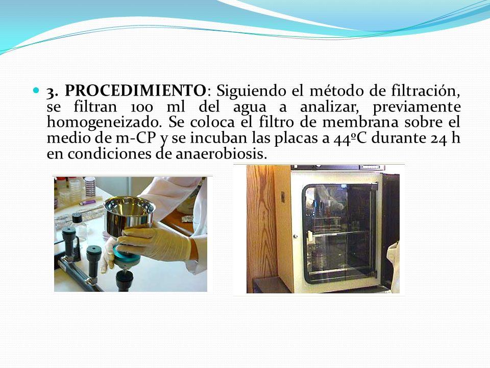 3. PROCEDIMIENTO: Siguiendo el método de filtración, se filtran 100 ml del agua a analizar, previamente homogeneizado. Se coloca el filtro de membrana