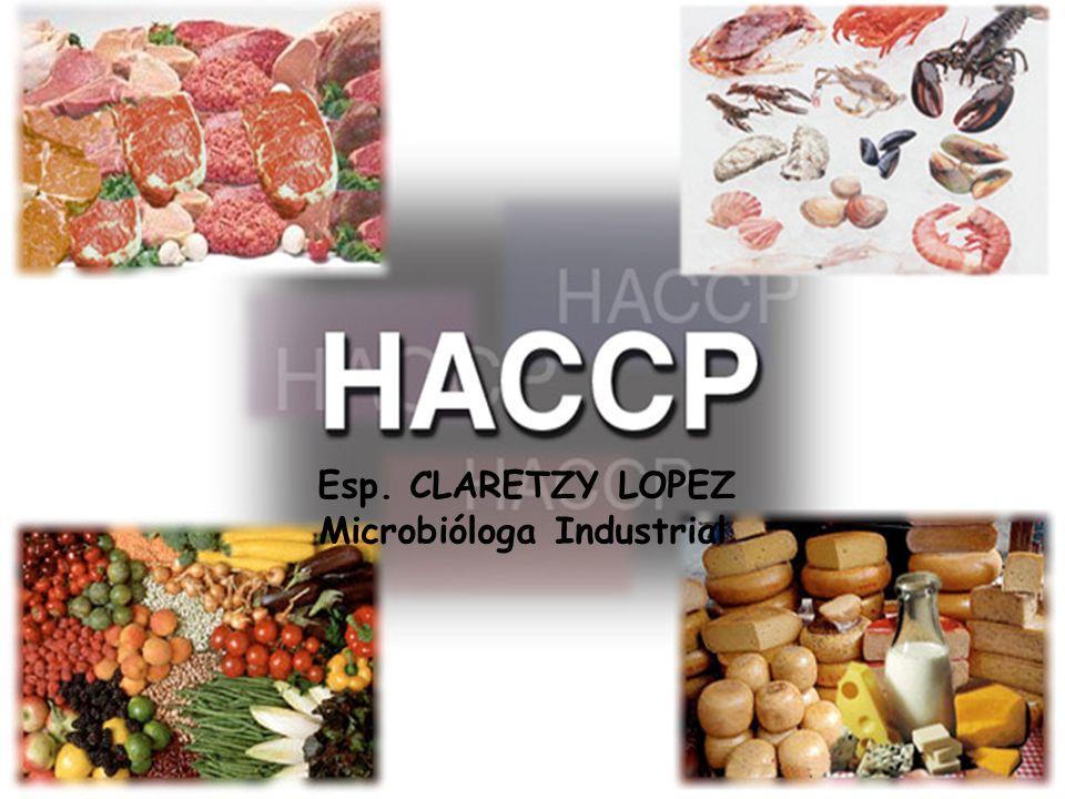 Contenido del plan HACCP 4.