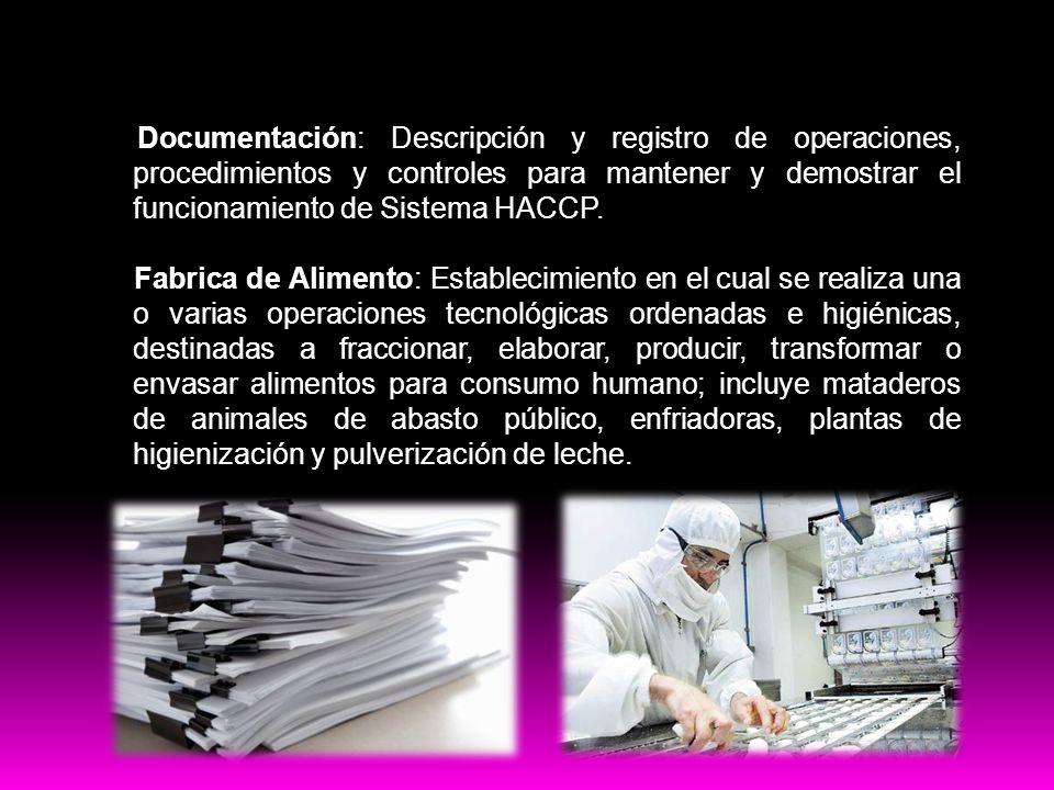 Buenas practicas Documentación: Descripción y registro de operaciones, procedimientos y controles para mantener y demostrar el funcionamiento de Siste