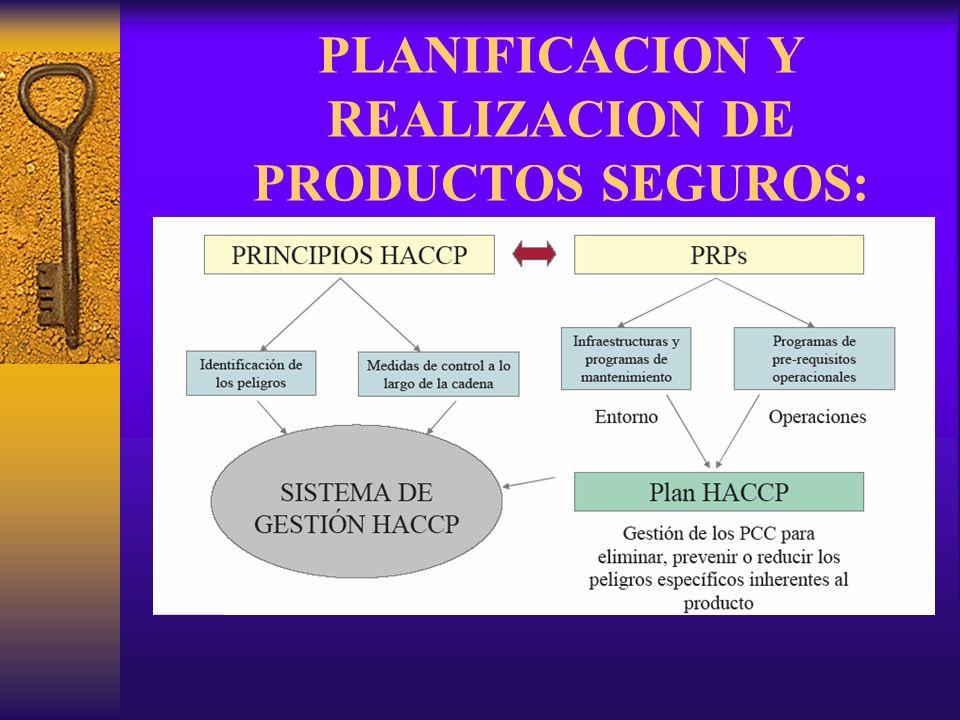 PLANIFICACION Y REALIZACION DE PRODUCTOS SEGUROS: