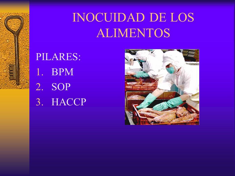 INOCUIDAD DE LOS ALIMENTOS PILARES: 1.BPM 2.SOP 3.HACCP
