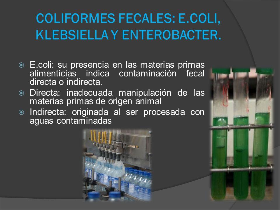 COLIFORMES FECALES: E.COLI, KLEBSIELLA Y ENTEROBACTER. E.coli: su presencia en las materias primas alimenticias indica contaminación fecal directa o i