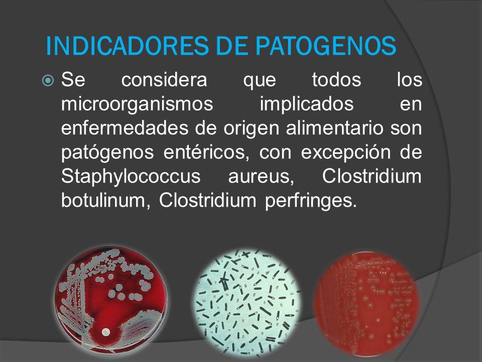 INDICADORES DE PATOGENOS Se considera que todos los microorganismos implicados en enfermedades de origen alimentario son patógenos entéricos, con exce