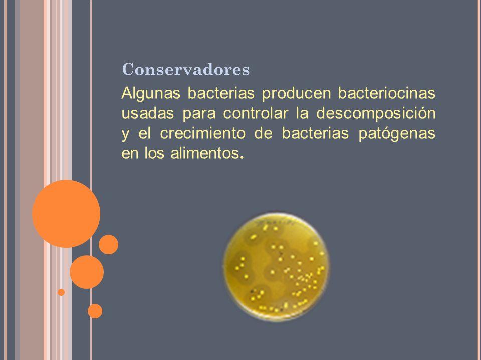 Conservadores Algunas bacterias producen bacteriocinas usadas para controlar la descomposición y el crecimiento de bacterias patógenas en los alimento