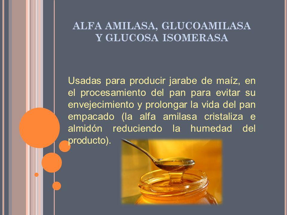 ALFA AMILASA, GLUCOAMILASA Y GLUCOSA ISOMERASA Usadas para producir jarabe de maíz, en el procesamiento del pan para evitar su envejecimiento y prolon