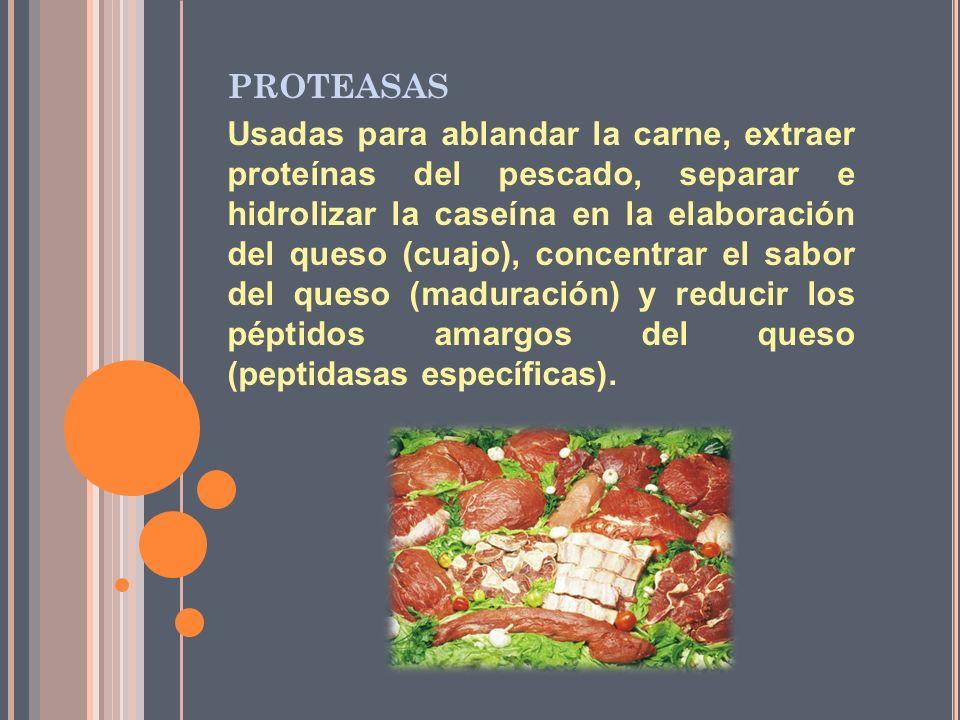 PROTEASAS Usadas para ablandar la carne, extraer proteínas del pescado, separar e hidrolizar la caseína en la elaboración del queso (cuajo), concentra