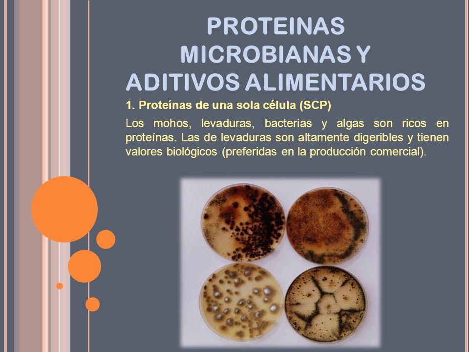 PROTEINAS MICROBIANAS Y ADITIVOS ALIMENTARIOS 1. Proteínas de una sola célula (SCP) Los mohos, levaduras, bacterias y algas son ricos en proteínas. La