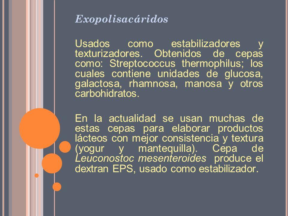 Exopolisacáridos Usados como estabilizadores y texturizadores. Obtenidos de cepas como: Streptococcus thermophilus; los cuales contiene unidades de gl