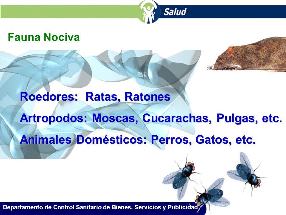 Departamento de Control Sanitario de Bienes, Servicios y Publicidad Fauna Nociva Roedores: Ratas, Ratones Artropodos: Moscas, Cucarachas, Pulgas, etc.