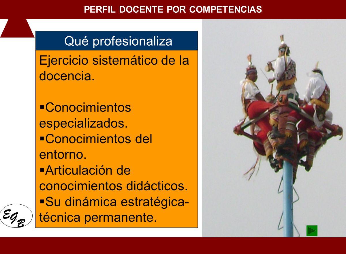 1. Conceptualización de la docencia en el Siglo XXI Qué profesionaliza Ejercicio sistemático de la docencia. Conocimientos especializados. Conocimient