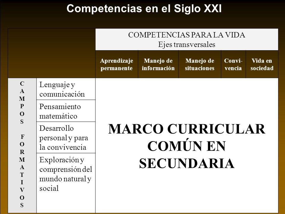 DIMENSIÓNCONTEX- TUALIZACIÓN ESTRATEGIASCOMPETENCIAS Dominio general del tema Comprensión Planificación Ejecución * Base de la Comprensión y Planificación de la tarea.