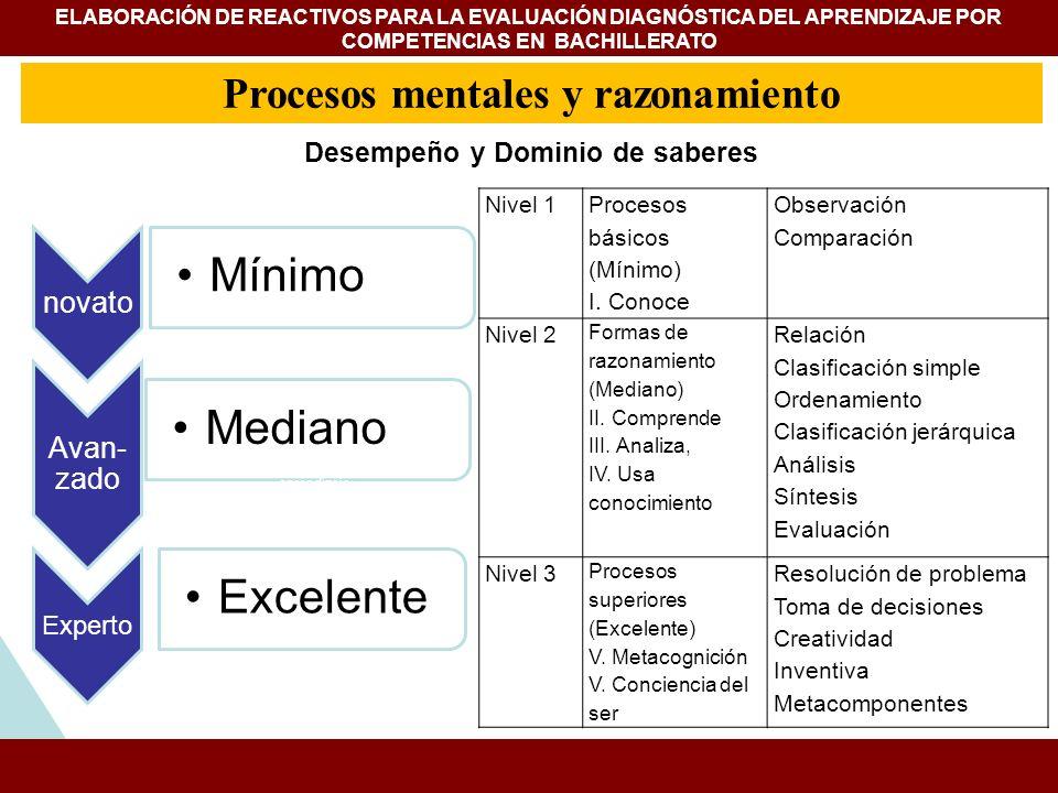 novato Mínimo Avan- zado Mediano Experto Excelente ESTUDIOS Y EXPERIENCIAS DE EVALUACIÓN APLICADAS A LA ENSEÑANZA DE LA HISTORIA FACULTAD DE FILOSOFÍA