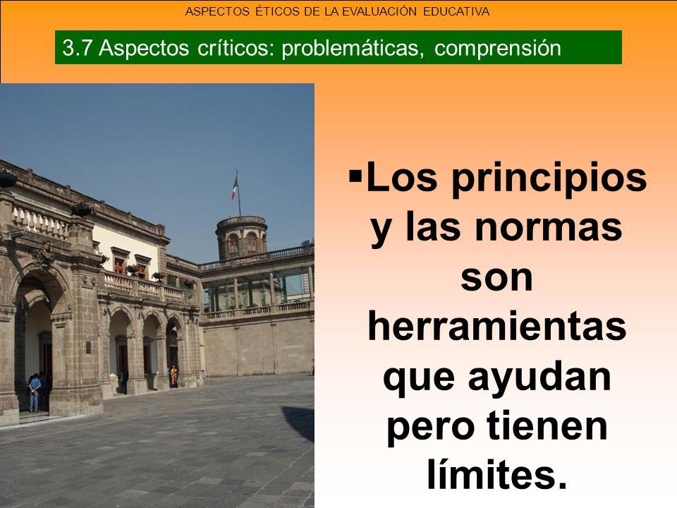 Los principios y las normas son herramientas que ayudan pero tienen límites.