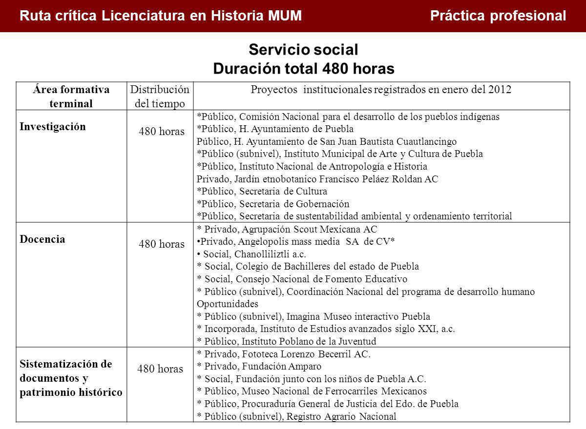 1. Conceptualización de la docencia en el Siglo XXI Ruta crítica Licenciatura en Historia MUM Práctica profesional Área formativa terminal Distribució