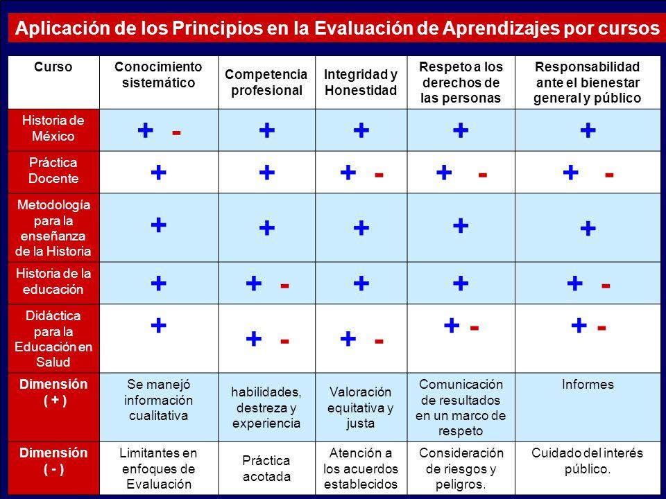 Aplicación de los Principios en la Evaluación de Aprendizajes por cursos CursoConocimiento sistemático Competencia profesional Integridad y Honestidad