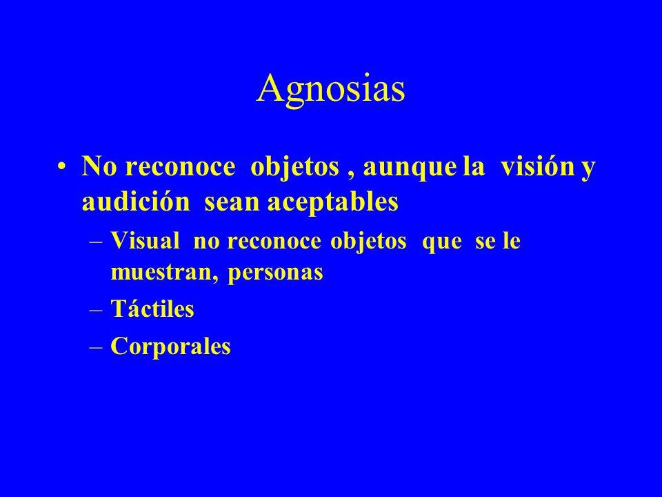 Agnosias No reconoce objetos, aunque la visión y audición sean aceptables –Visual no reconoce objetos que se le muestran, personas –Táctiles –Corporal