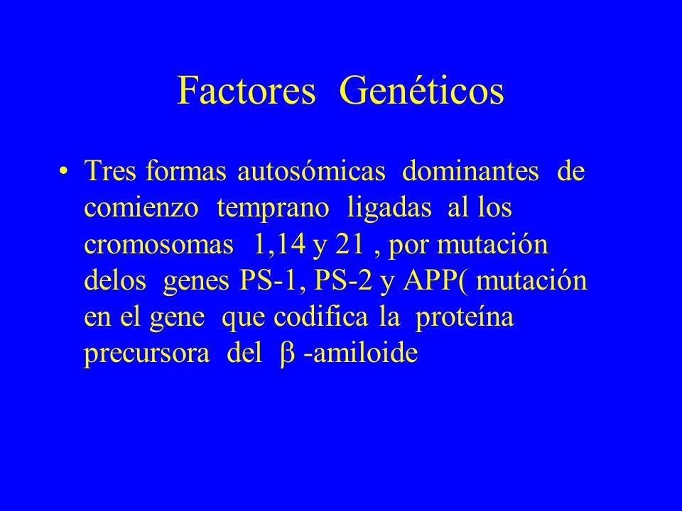 Factores Genéticos Tres formas autosómicas dominantes de comienzo temprano ligadas al los cromosomas 1,14 y 21, por mutación delos genes PS-1, PS-2 y