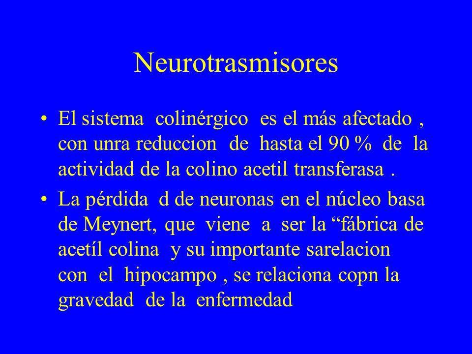 Neurotrasmisores El sistema colinérgico es el más afectado, con unra reduccion de hasta el 90 % de la actividad de la colino acetil transferasa. La pé