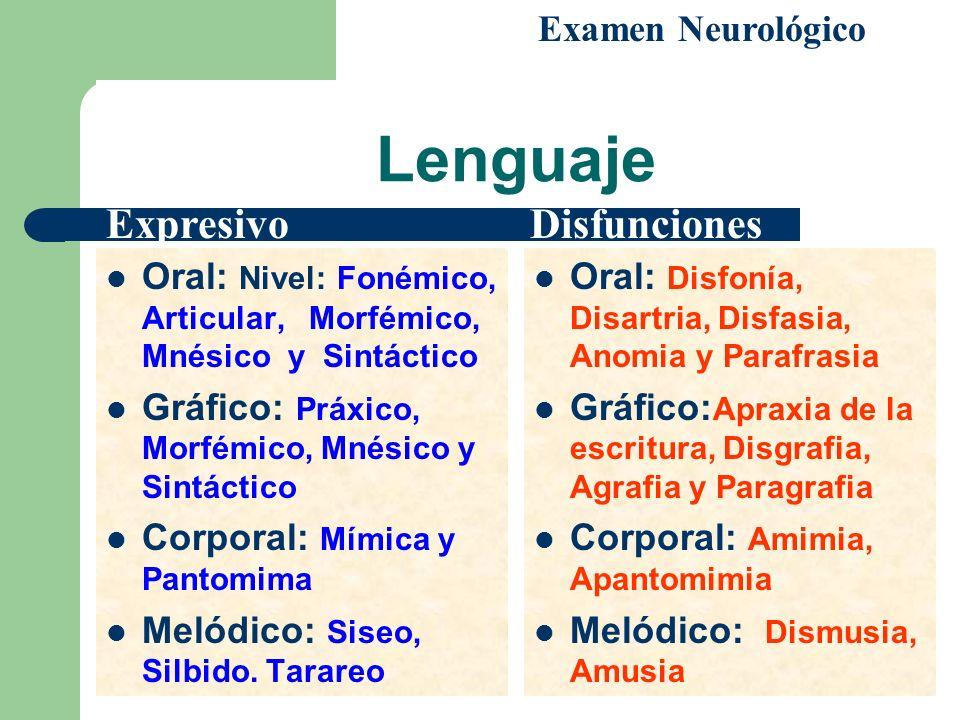Lenguaje Oral: Nivel: Fonémico, Articular, Morfémico, Mnésico y Sintáctico Gráfico: Práxico, Morfémico, Mnésico y Sintáctico Corporal: Mímica y Pantom