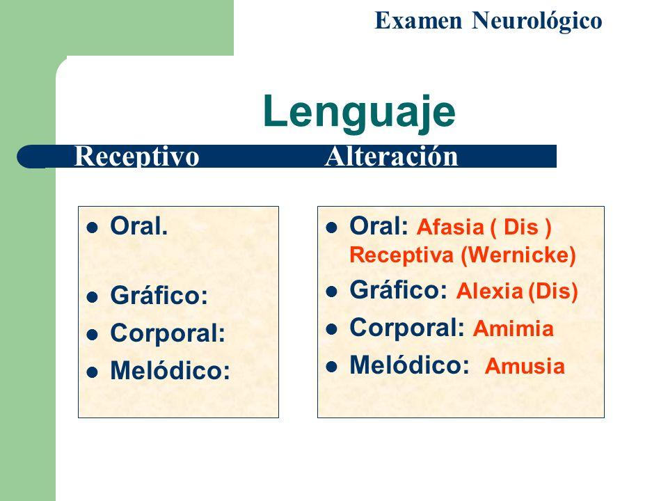 Lenguaje Oral. Gráfico: Corporal: Melódico: Oral: Afasia ( Dis ) Receptiva (Wernicke) Gráfico: Alexia (Dis) Corporal: Amimia Melódico: Amusia Examen N