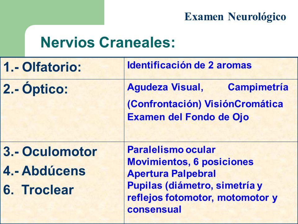 1.- Olfatorio: Identificación de 2 aromas 2.- Óptico: Agudeza Visual, Campimetría (Confrontación) VisiónCromática Examen del Fondo de Ojo 3.- Oculomot