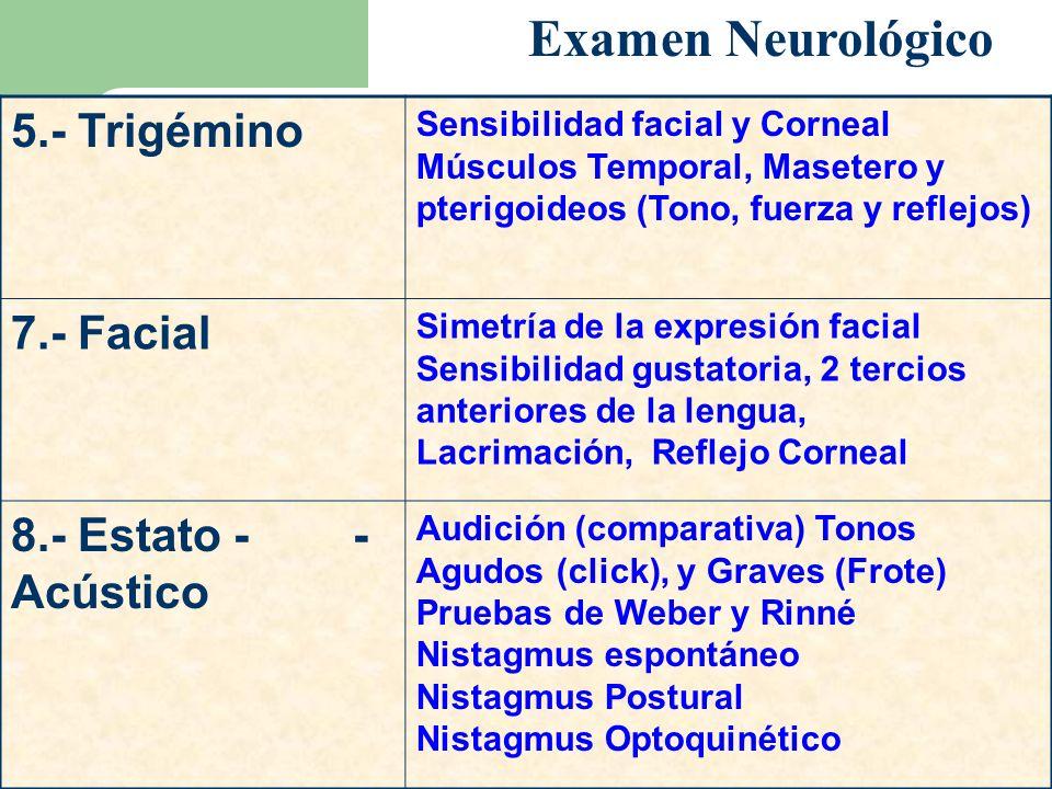 5.- Trigémino Sensibilidad facial y Corneal Músculos Temporal, Masetero y pterigoideos (Tono, fuerza y reflejos) 7.- Facial Simetría de la expresión f