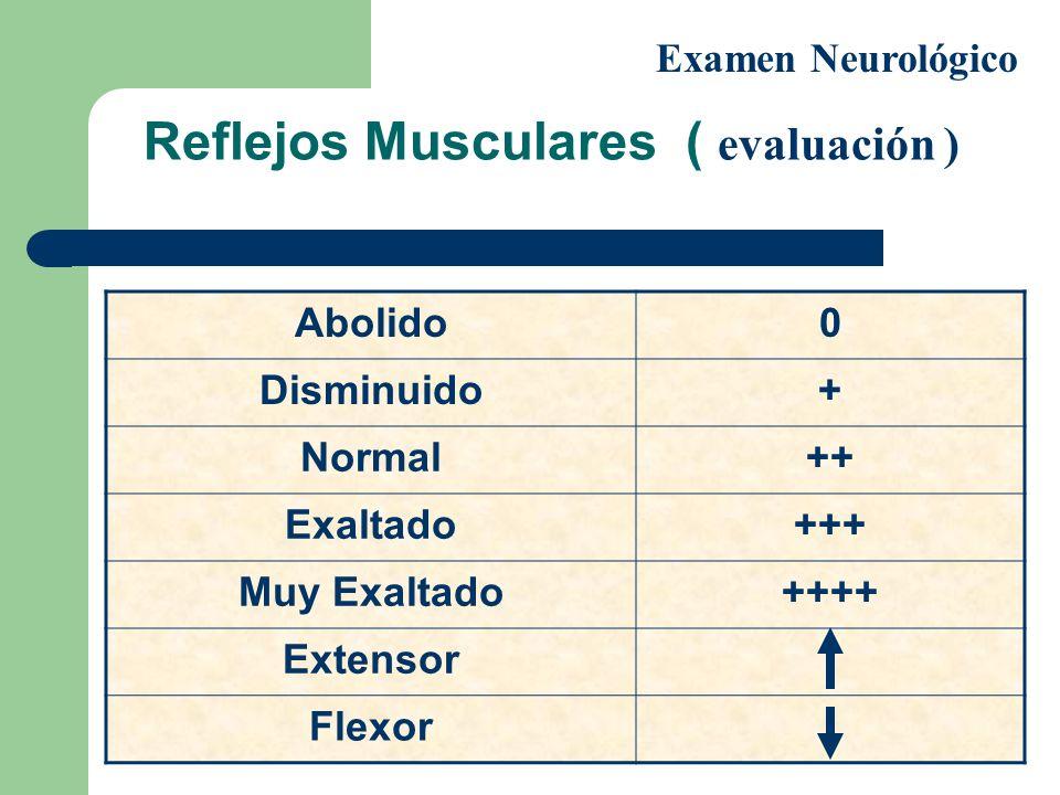 Reflejos Musculares ( evaluación ) Examen Neurológico Abolido0 Disminuido+ Normal++ Exaltado+++ Muy Exaltado++++ Extensor Flexor