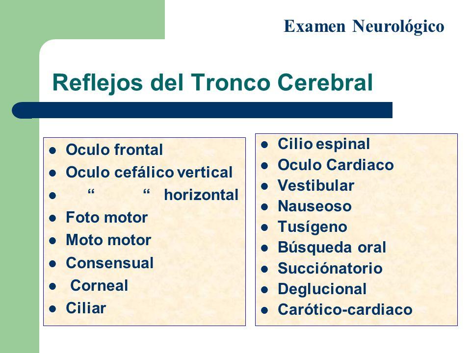 Reflejos del Tronco Cerebral Oculo frontal Oculo cefálico vertical horizontal Foto motor Moto motor Consensual Corneal Ciliar Cilio espinal Oculo Card