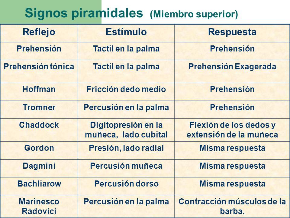 Signos piramidales (Miembro superior) ReflejoEstímuloRespuesta PrehensiónTactil en la palmaPrehensión Prehensión tónicaTactil en la palmaPrehensión Ex
