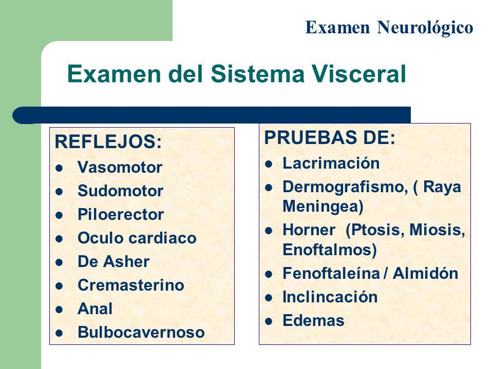 Examen del Sistema Visceral REFLEJOS: Vasomotor Sudomotor Piloerector Oculo cardiaco De Asher Cremasterino Anal Bulbocavernoso PRUEBAS DE: Lacrimación