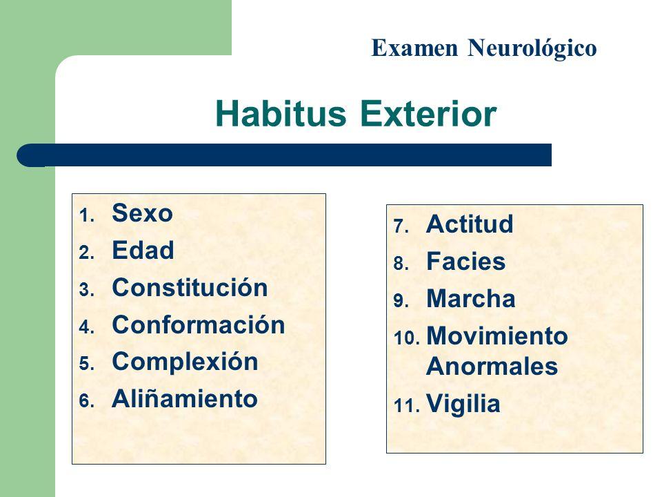 Habitus Exterior 1. Sexo 2. Edad 3. Constitución 4. Conformación 5. Complexión 6. Aliñamiento 7. Actitud 8. Facies 9. Marcha 10. Movimiento Anormales