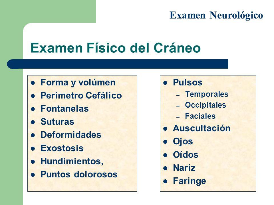 Examen Físico del Cráneo Forma y volúmen Perímetro Cefálico Fontanelas Suturas Deformidades Exostosis Hundimientos, Puntos dolorosos Pulsos – Temporal