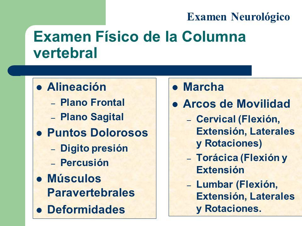 Examen Físico de la Columna vertebral Alineación – Plano Frontal – Plano Sagital Puntos Dolorosos – Digito presión – Percusión Músculos Paravertebrale