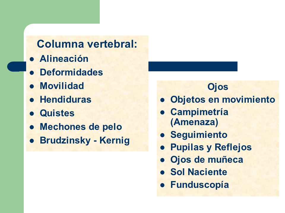 Columna vertebral: Alineación Deformidades Movilidad Hendiduras Quistes Mechones de pelo Brudzinsky - Kernig Ojos Objetos en movimiento Campimetría (A