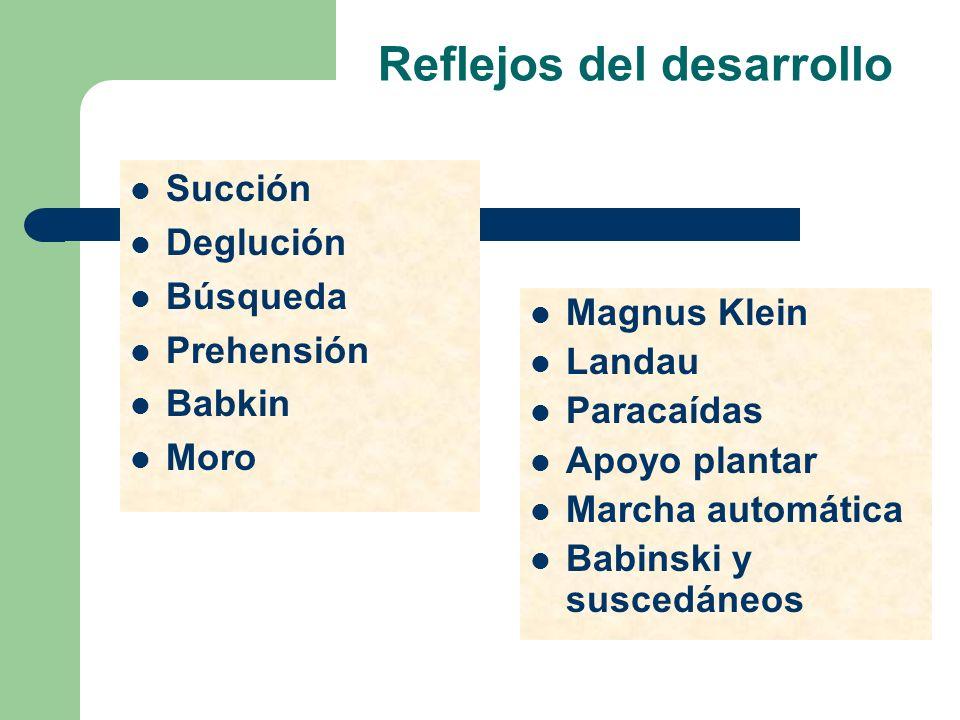 Reflejos del desarrollo Succión Deglución Búsqueda Prehensión Babkin Moro Magnus Klein Landau Paracaídas Apoyo plantar Marcha automática Babinski y su