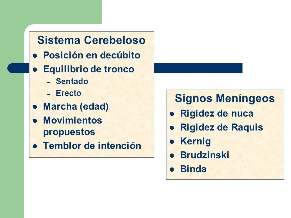 Sistema Cerebeloso Posición en decúbito Equilibrio de tronco – Sentado – Erecto Marcha (edad) Movimientos propuestos Temblor de intención Signos Menín
