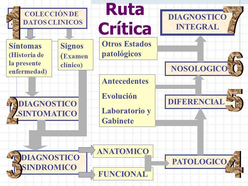 COLECCIÓN DE, DATOS CLINICOS Síntomas (Historia de la presente enfermedad) Signos ( Examen clínico) DIAGNOSTICO.SINTOMATICO DIAGNOSTICO -.SINDROMICO ANATOMICO FUNCIONAL PATOLOGICO DIFERENCIAL NOSOLOGICO DIAGNOSTICO INTEGRAL Antecedentes Evolución Laboratorio y Gabinete Otros Estados patológicos Ruta Crítica