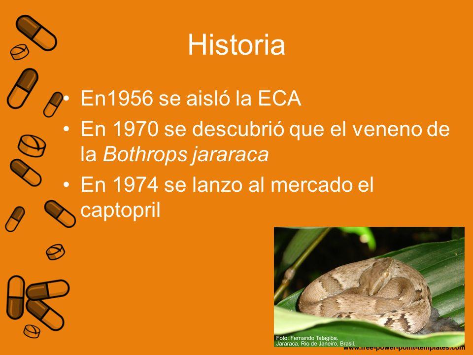 Historia En1956 se aisló la ECA En 1970 se descubrió que el veneno de la Bothrops jararaca En 1974 se lanzo al mercado el captopril