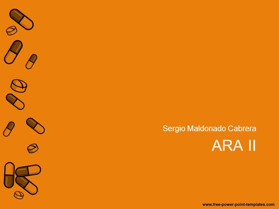 ARA II Sergio Maldonado Cabrera