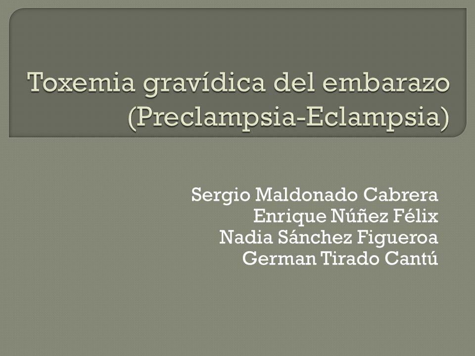 Sergio Maldonado Cabrera Enrique Núñez Félix Nadia Sánchez Figueroa German Tirado Cantú