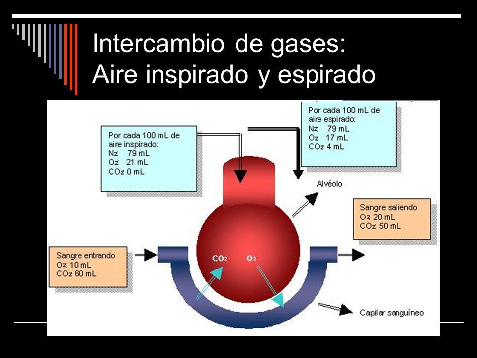 Intercambio de gases: Aire inspirado y espirado