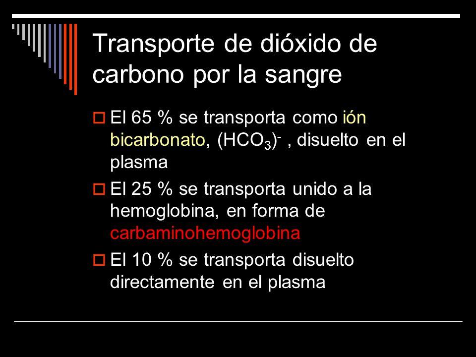 Transporte de dióxido de carbono por la sangre El 65 % se transporta como ión bicarbonato, (HCO 3 ) -, disuelto en el plasma El 25 % se transporta uni