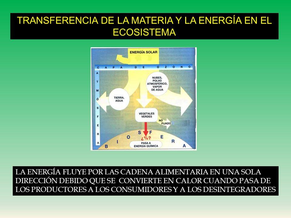 MATERIA Y ENRGÍA EN EL ECOSISTEMA corteza terrestre: abundan minerales hidrósfera: agua y minerales disueltos atmósfera: abunda nitrógeno y oxígeno fu