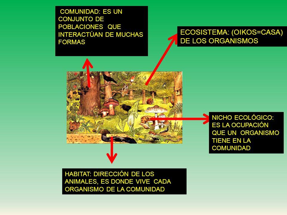 La ciencia que estudia las relaciones, la distribución y la abundancia de los organismos, o grupos de organismos en un ambiente determinado ECOLOGÍA =