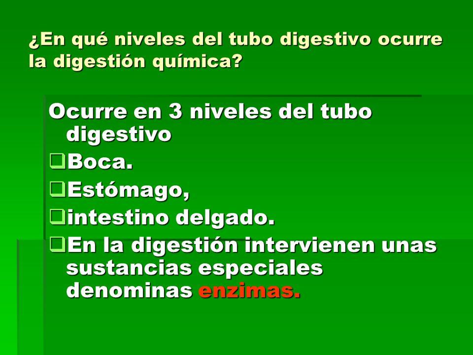 ¿En qué niveles del tubo digestivo ocurre la digestión química? Ocurre en 3 niveles del tubo digestivo Boca. Boca. Estómago, Estómago, intestino delga
